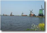 Paesi Bassi...