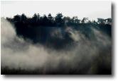 Nebbia e vento