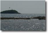 Mare di argento
