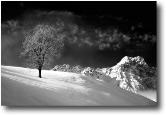 Noce sul monte di Zambla